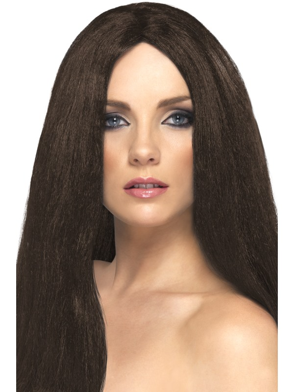Long Straight Brown Wig